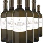 Pinot Grigio • Zanini • 6 bottiglie • SPEDIZIONE GRATUITA