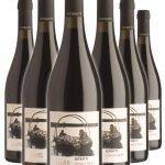 Pinot Nero Ritratti DOC • Cantina Lavis • 6 bottiglie • SPEDIZIONE GRATUITA