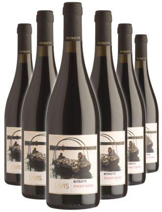 Pinot Nero Ritratti DOC • Cantina Lavis • 6 bottiglie