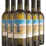 Pinot Grigio Ritratti DOC • Cantina Lavis • 6 bottiglie • SPEDIZIONE GRATUITA