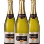 Trentodoc Spumante Metodo Classico Brut • Simoncelli • 3 bottiglie • SPEDIZIONE GRATUITA