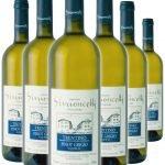 Trentino Pinot Grigio • Simoncelli • 6 bottiglie • SPEDIZIONE GRATUITA