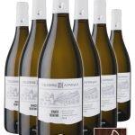 Bianco Trentino Biologico DOC • Riva del Garda • 6 bottiglie • SPEDIZIONE GRATUITA