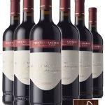 Lagrein Terra San Mauro DOP • Cantina Mori Colli Zugna • 6 bottiglie • SPEDIZIONE GRATUITA