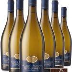 Müller Thurgau Frizzante Vigneti delle Dolomiti IGP • Cantina Mori Colli Zugna • 6 bottiglie • SPEDIZIONE GRATUITA