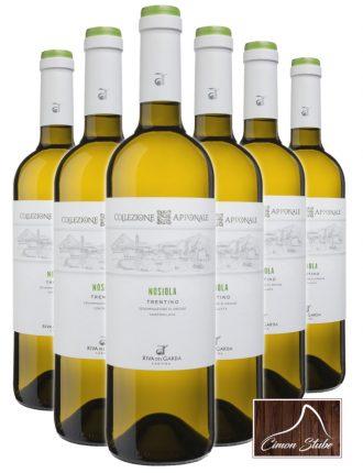Nosiola Trentino DOC • Riva del Garda • 6 bottiglie