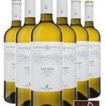 Pinot Grigio Trentino DOC • Riva del Garda • 6 bottiglie • SPEDIZIONE GRATUITA