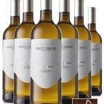 Pinot Grigio Trentino DOP • Cantina Mori Colli Zugna • 6 bottiglie • SPEDIZIONE GRATUITA